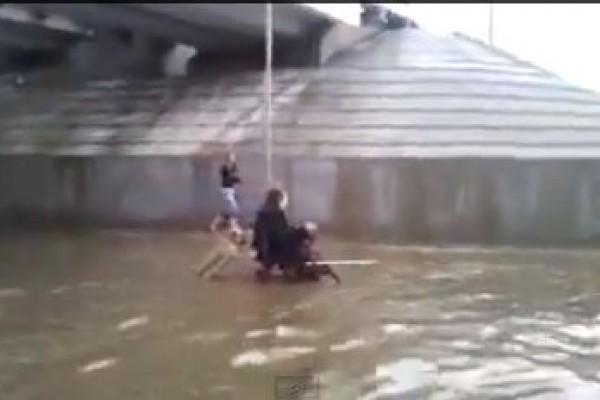 Insólito: Perro empuja hombre en silla de ruedas en medio de inundación (Video)