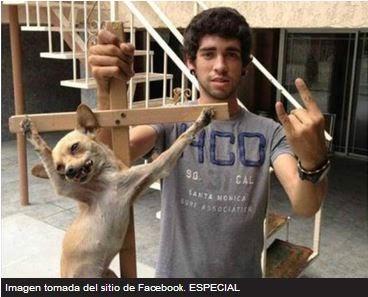 Perro crucificado causa escándalo en las redes sociales