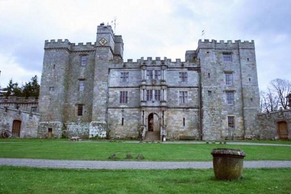 Una boda tenebrosa en un Castillo embrujado…