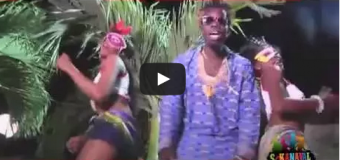PALITO DE COCO arrasando en Haití con nuevo tema. VIDEO..
