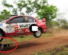 """VIDEO: El perro """"más sortudo""""  del mundo se salvó de la muerte en  Rally de Bolivia"""