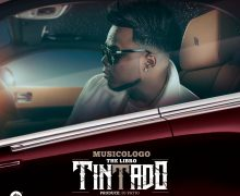 DESCARGAR – Musicologo The Libro – Tintado