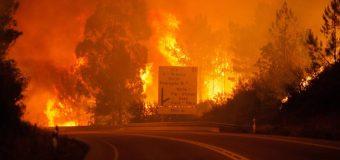 Centenares de bomberos no han podido con fuego en Portugal y ya van 62 muertos