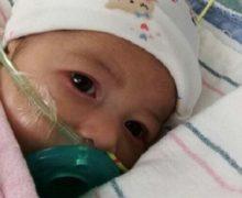 ¡EUREKA! Astrid sale bien de operación; durará de 24 a 48 horas sedada