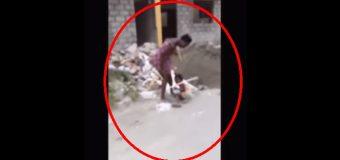"""VÍDEO: """"Ayúdame"""" grita niña de 3 años mientras su madre la golpea brutalmente en Manoguayabo"""