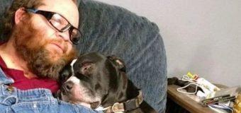 Por accidente, perro le disparó a su dueño y lo mandó al hospital