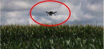 Dron con granadas desactivadas aterrizó en propiedad de jefe de seguridad de Baja California