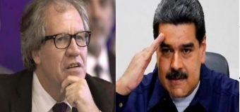 """ALMAGRO: """"no se puede descartar una intervención militar contra Maduro"""""""