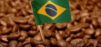 Brasil se consolida como el mayor exportador mundial de café en 2018