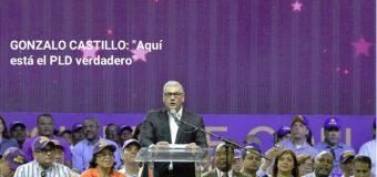 GONZALO CASTILLO divide el PLD en verdadero y no verdadero…